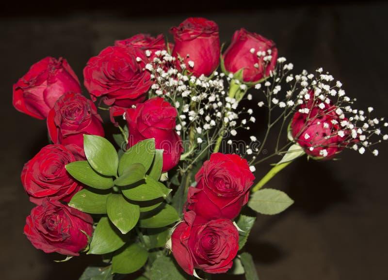 Rosas vermelhas indicadas com um fundo preto imagens de stock