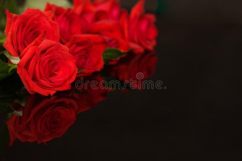 Rosas vermelhas no preto imagem de stock