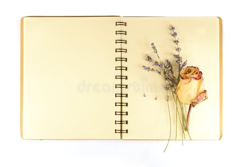 Rosas y cuaderno viejo fotografía de archivo