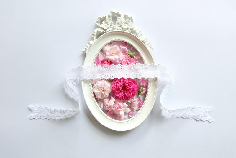 Rosas y marcos rosados imagen de archivo libre de regalías