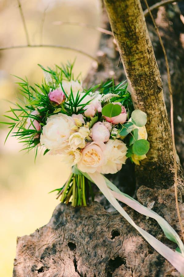 Rosas y peonías de la boda en corteza de olivo El casarse en Montene imagen de archivo libre de regalías