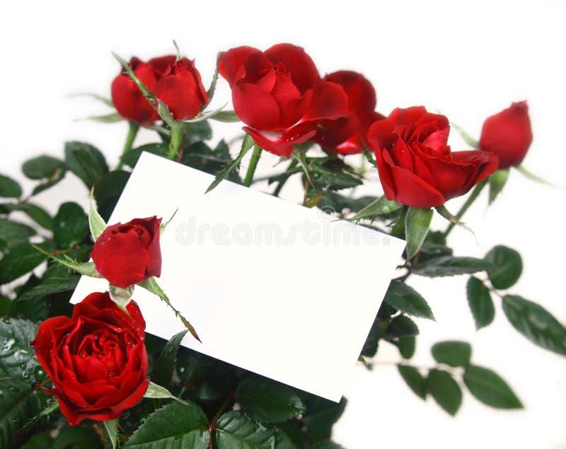 Rosas y tarjeta del regalo imágenes de archivo libres de regalías