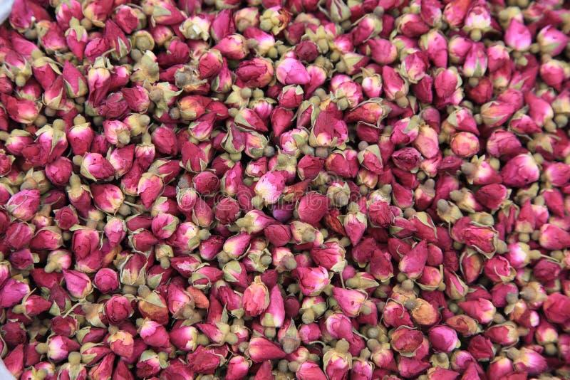 Download Rose stock image. Image of girls, buds, macro, aromatherapy - 12921343