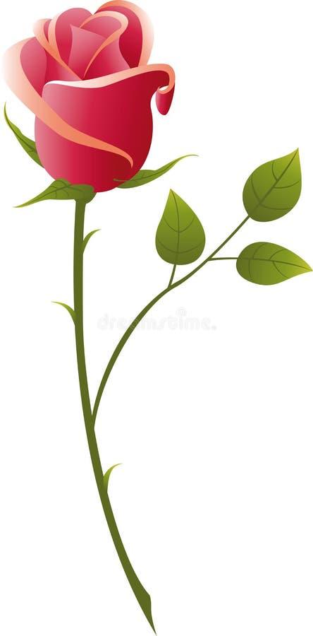 Rose illustration de vecteur