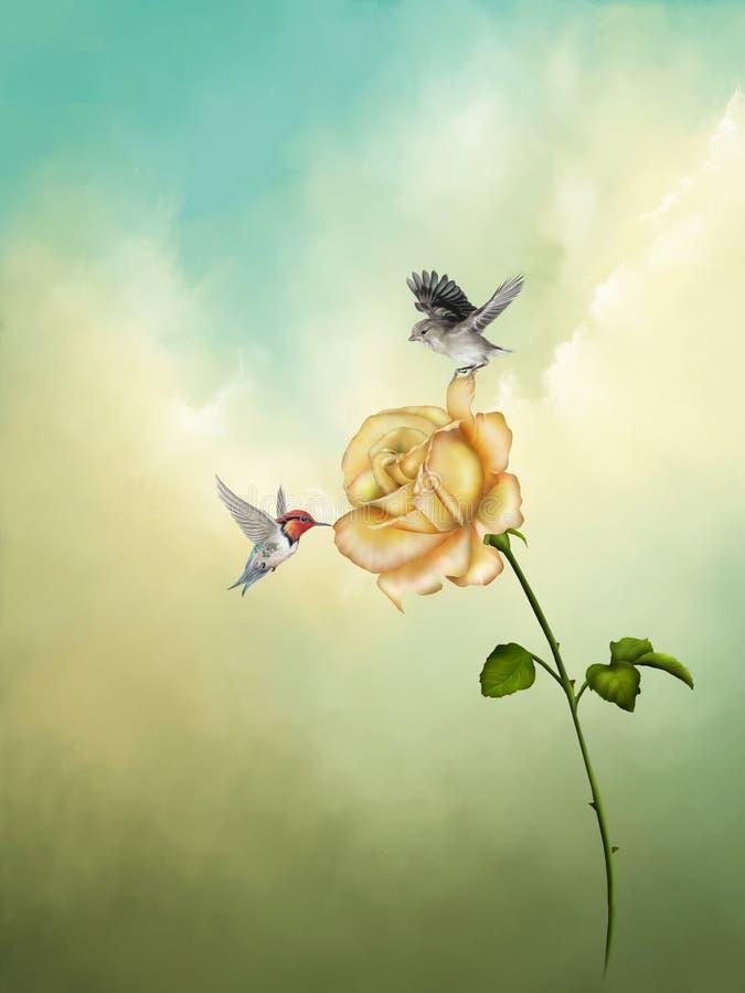 Rose illustration libre de droits