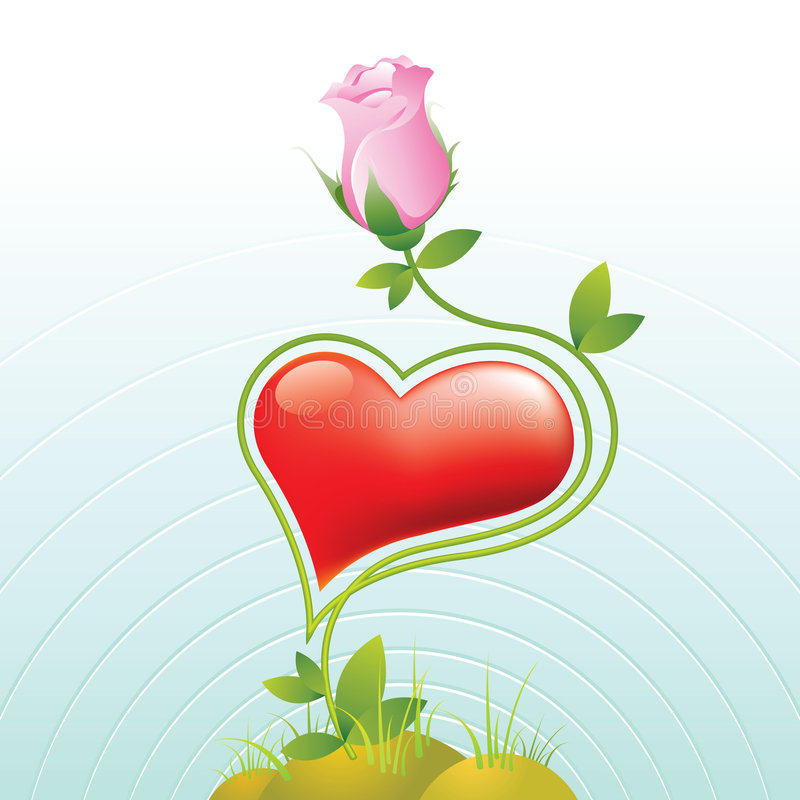 Rose. One flowers and love rose vector illustration