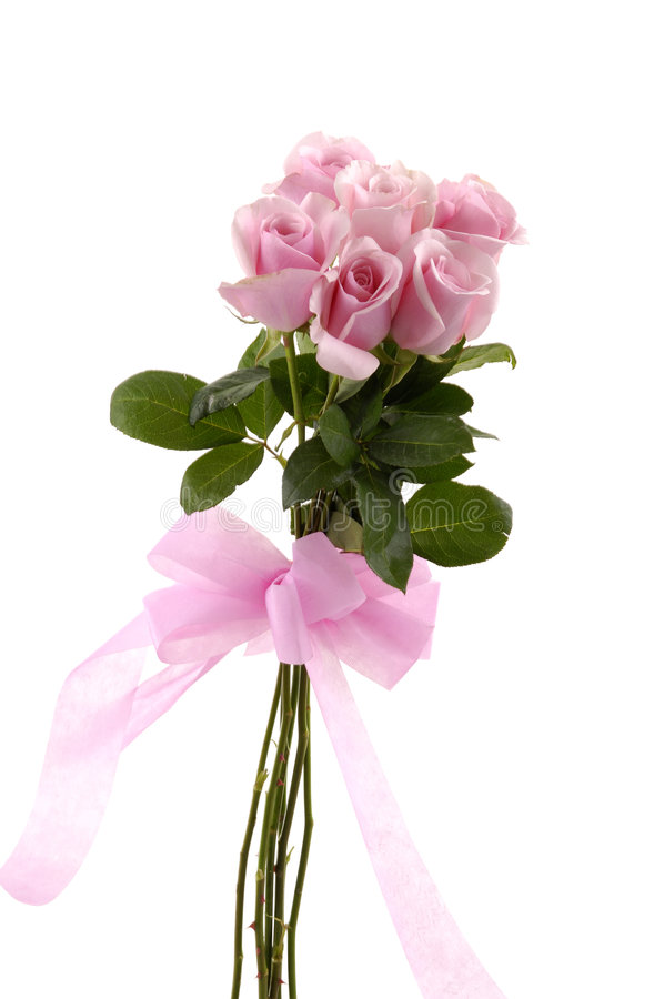 Rose. Pink rose valentines or wedding posy isolated on white royalty free stock photo