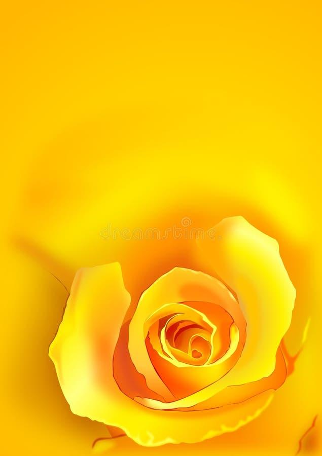 Rose amarilla ilustración del vector