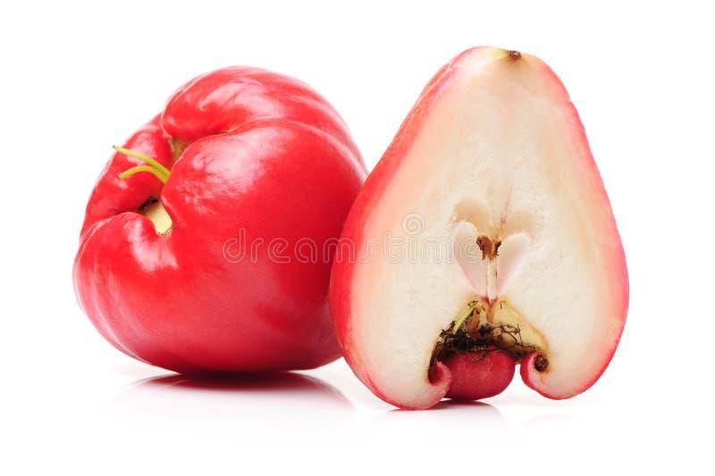 Rose Apple images libres de droits