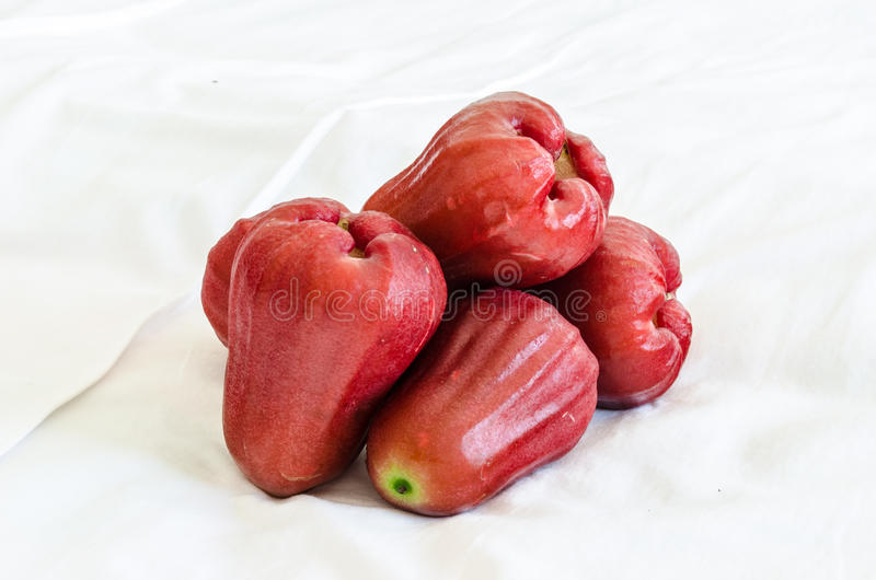 Download Rose apple stock image. Image of white, makopa, background - 29130283