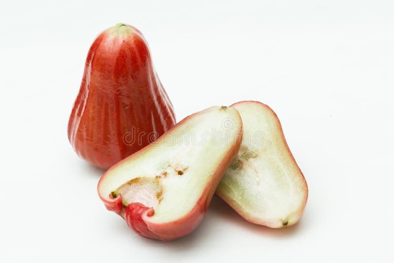 Rose Apple photographie stock
