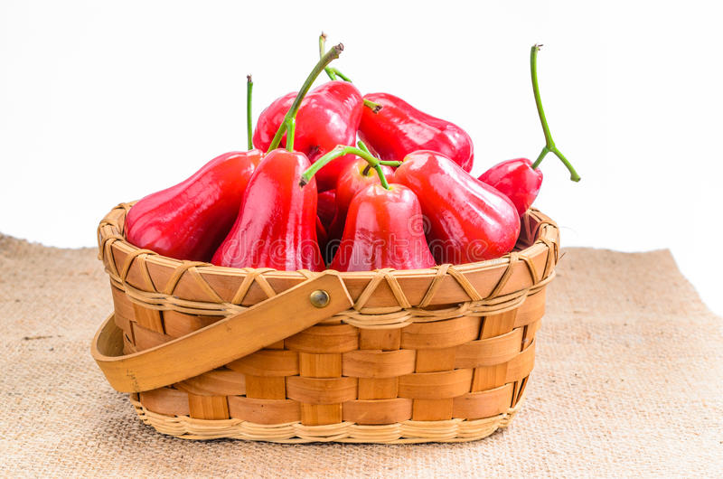 Rose apple in stock images