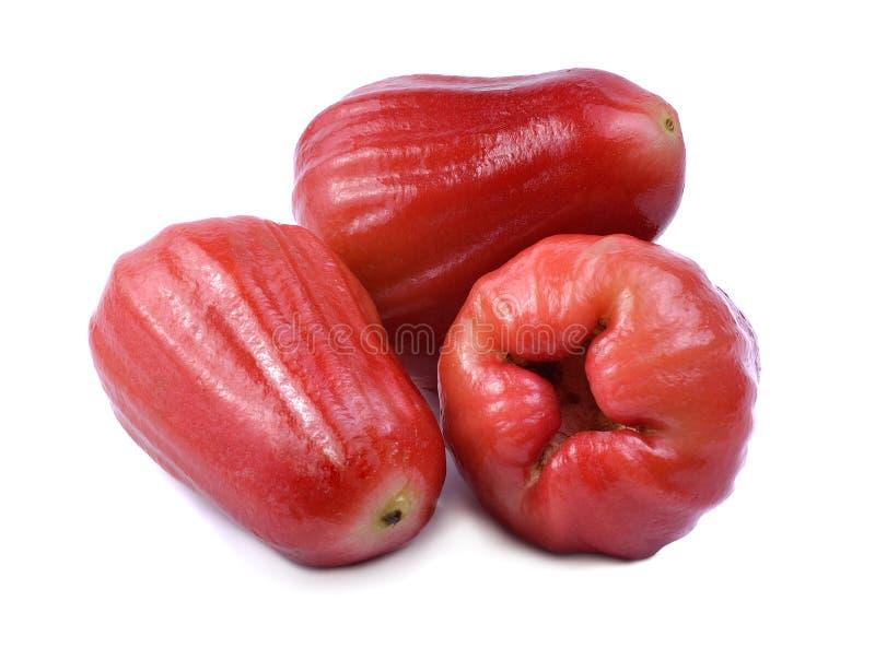 Download Rose apple stock image. Image of slice, organic, farm - 68081727
