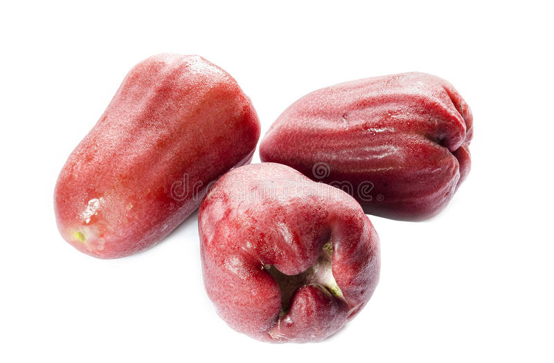 Rose Apple stock images