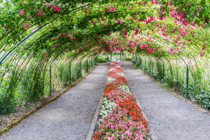 Rose Arbor Landscape 3 royalty free stock images