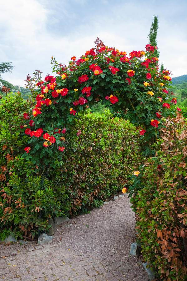 Rose Arch in English Country Garden royalty free stock images
