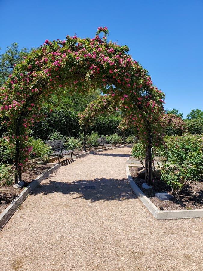 Rose Arch Garden cor-de-rosa imagens de stock royalty free