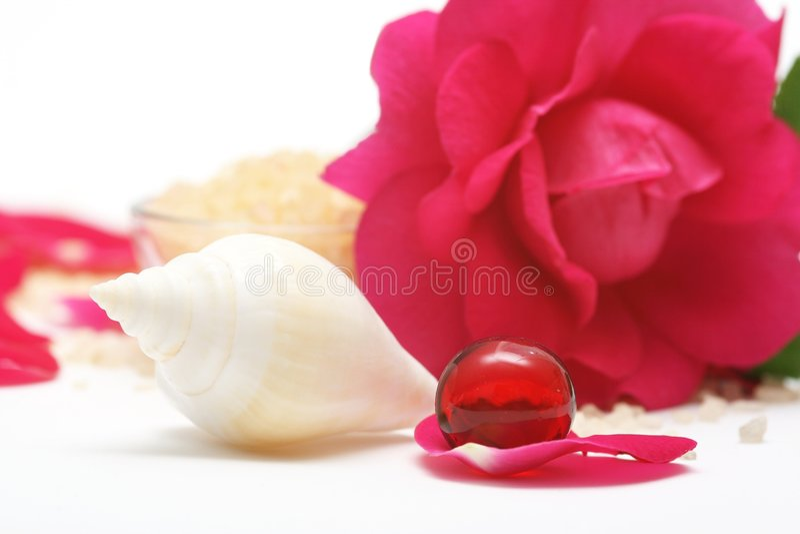 Download Rose aromatherapy stock photo. Image of nature, buddhism - 5465854