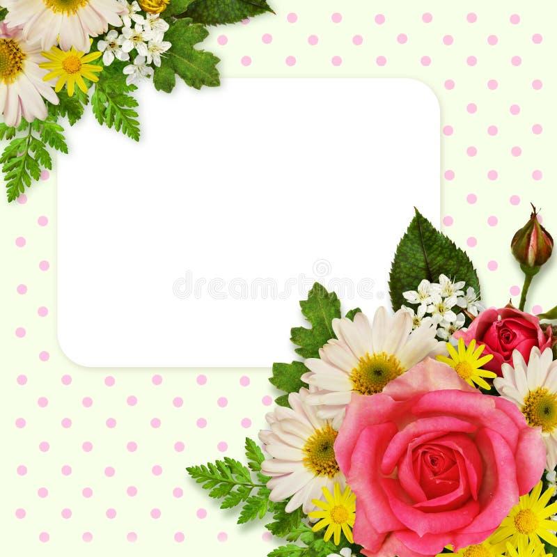 Rose, asters et décoration de fleurs sauvages pour le fond illustration stock