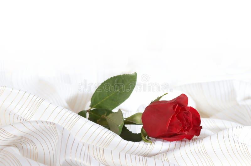 Rose auf dem Bett lizenzfreie stockfotos