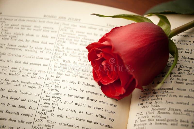 Rose auf Shakespeare stockfoto