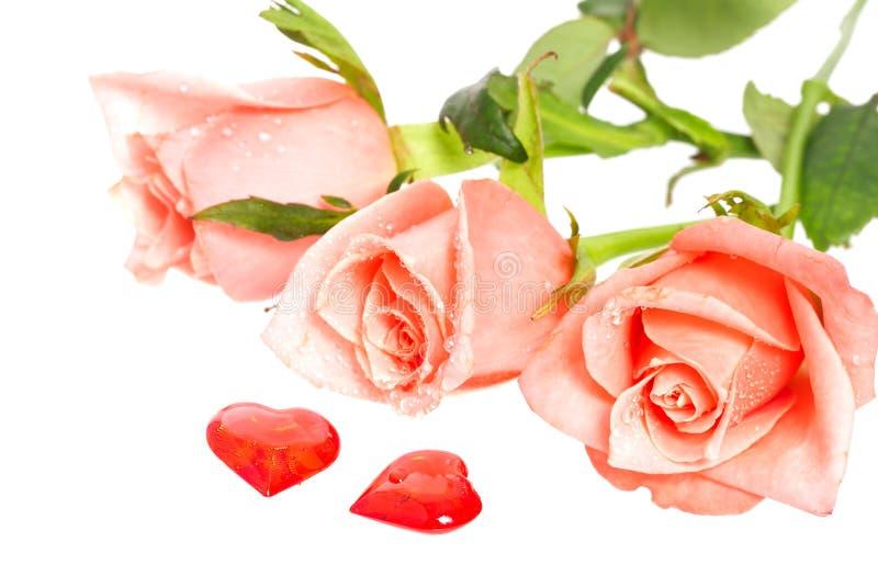 Rose avec des baisses de l'eau et de deux coeurs tout près photos stock