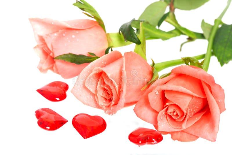 Rose avec des baisses de l'eau et des coeurs tout près photo stock