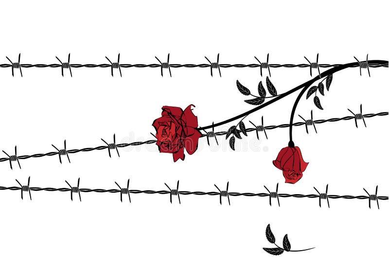 Rose avec le barbelé illustration libre de droits
