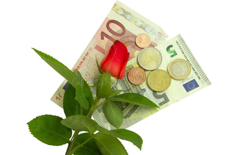 Rose, Banknoten und Münzen lizenzfreie stockfotografie