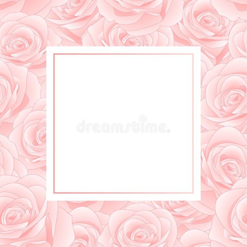 Rose Banner Card Border rosada hermosa - Rosa aislados en el fondo blanco Día de tarjeta del día de San Valentín Ilustración del  ilustración del vector
