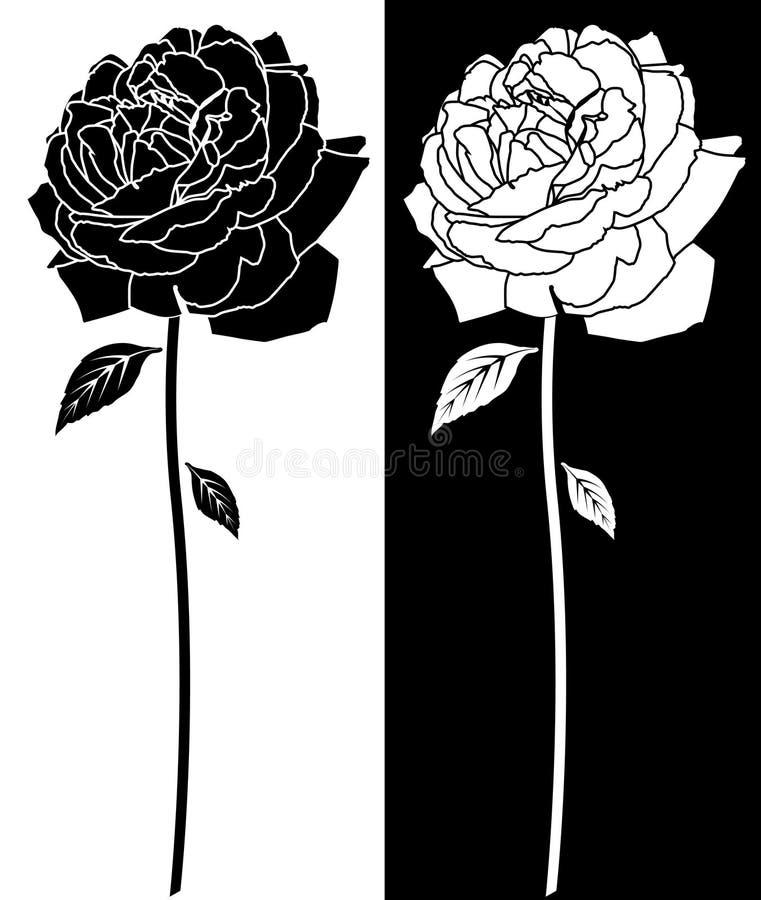 Rose Bloom Line Art stock illustration