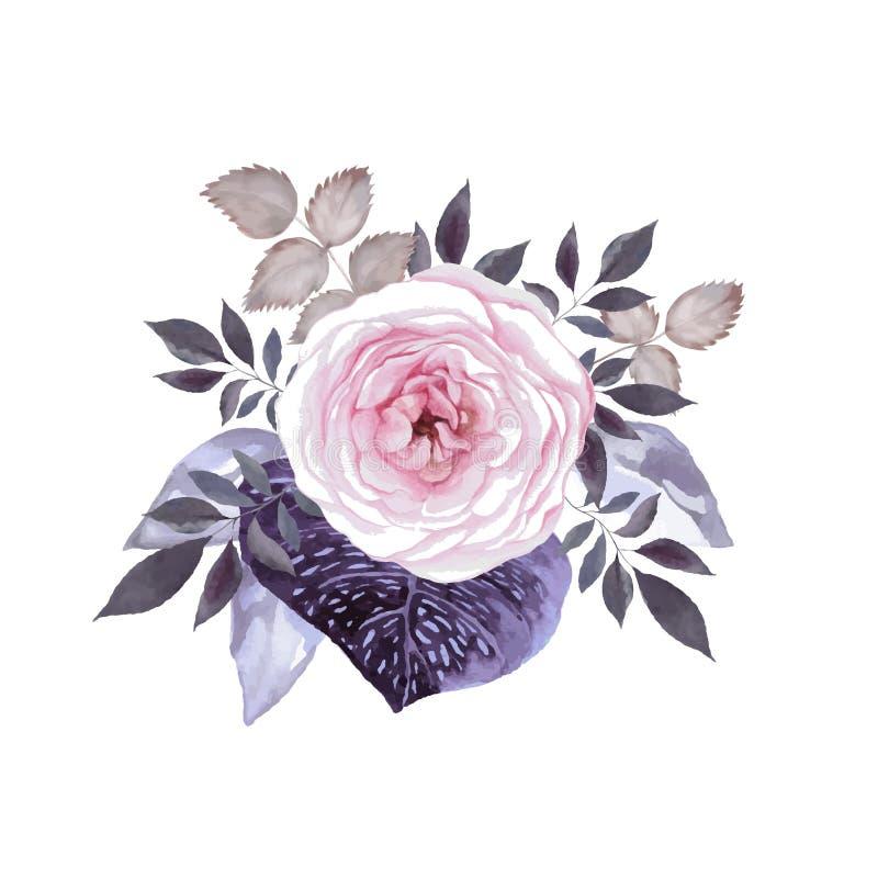 Rose blossom vector illustration