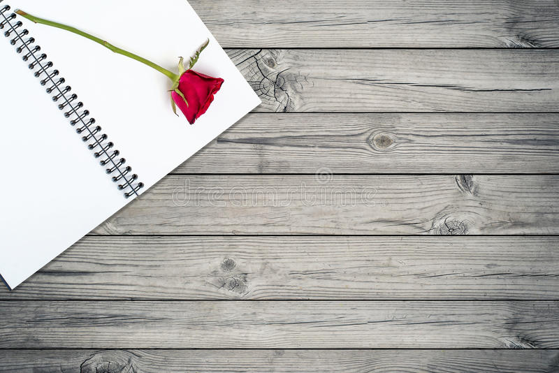 Rose on a book on wooden table royalty free stock photography