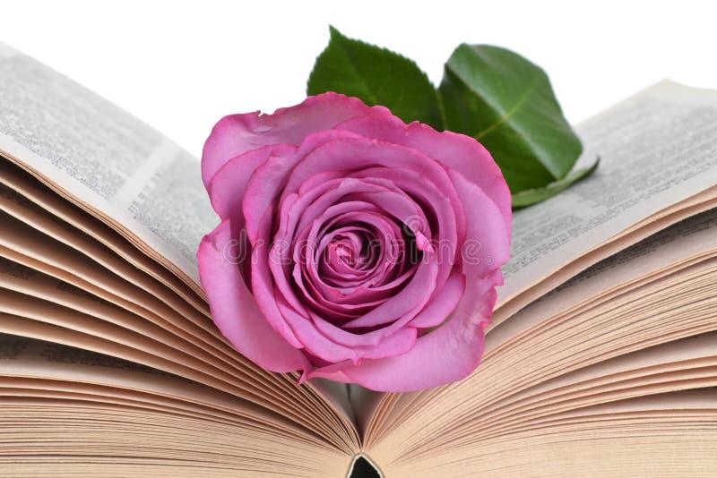 Rose Bookmark royalty free stock photo