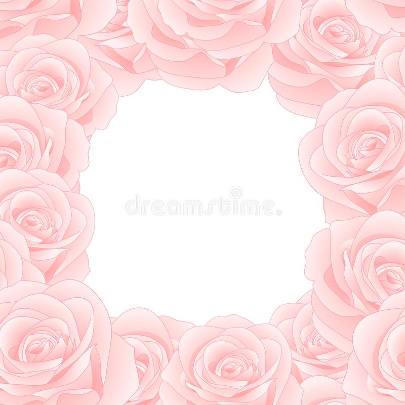 Rose Border rosada hermosa - Rosa aislados en el fondo blanco Día de tarjeta del día de San Valentín Ilustración del vector libre illustration