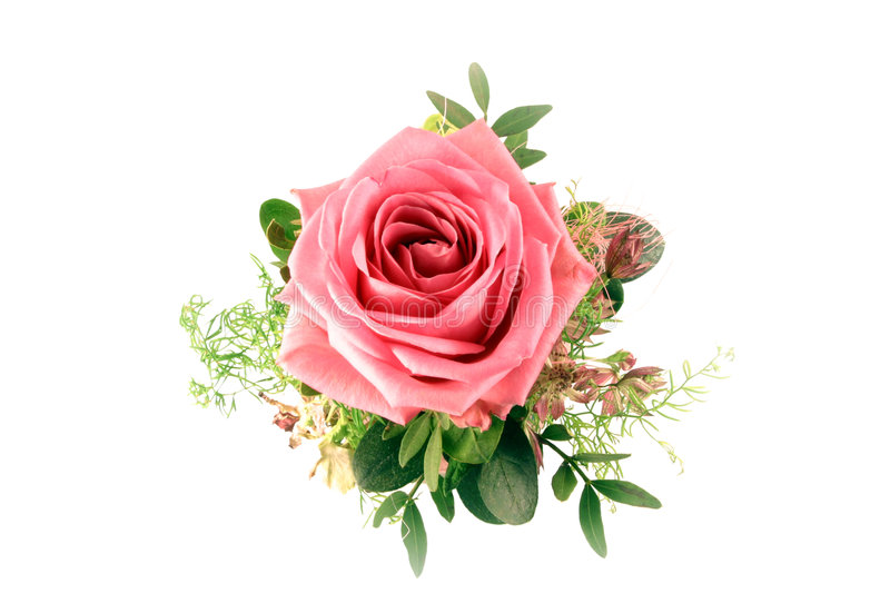 Rose Bouquet. Bouquet with a single rose isolated on a white background royalty free stock photos