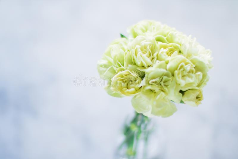 Rose bouquet decor - wedding, holiday and floral garden styled concept. Elegant visuals stock photos