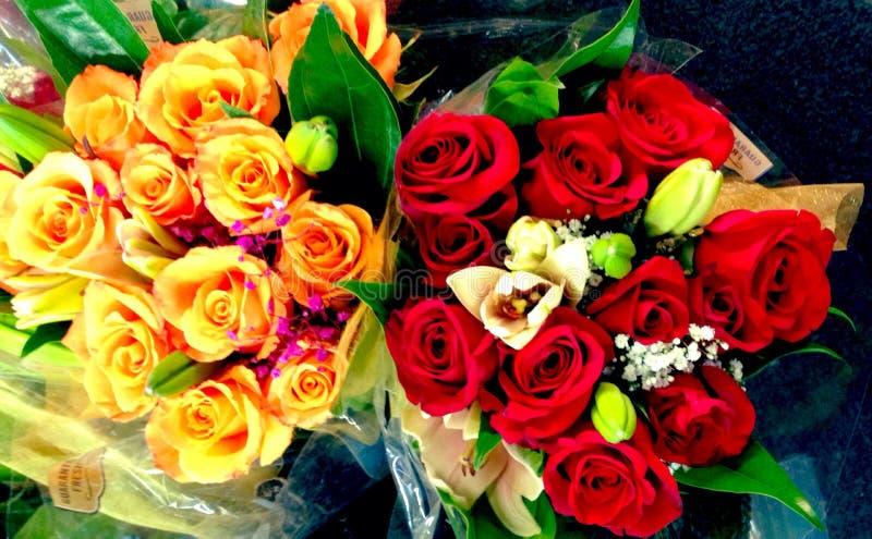 Rose Bouquets imagens de stock royalty free