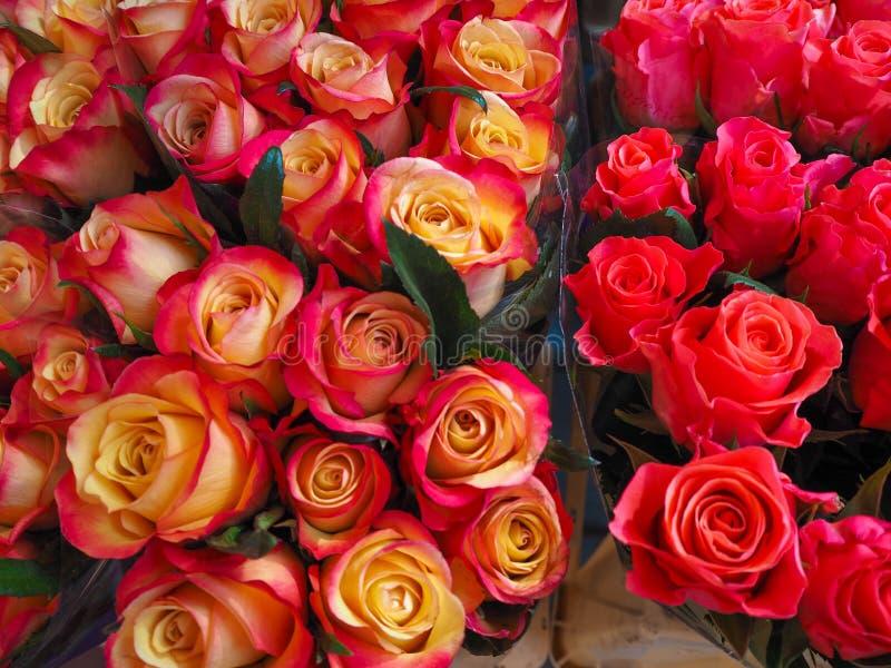 Rose Bouquets cor-de-rosa vermelha e amarela e brilhante no mercado dos fazendeiros fotografia de stock