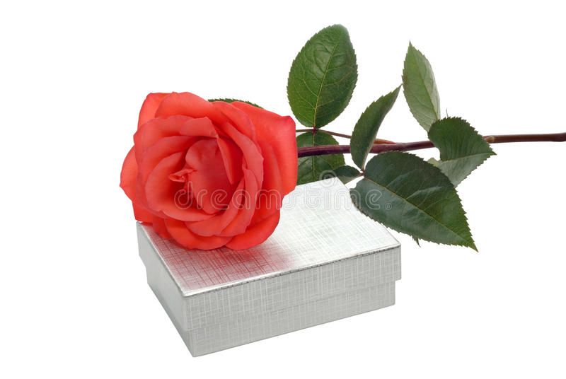Rose and box