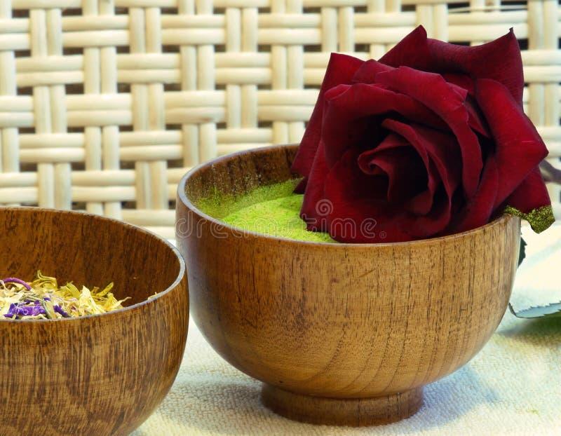rose brunnsort royaltyfria foton