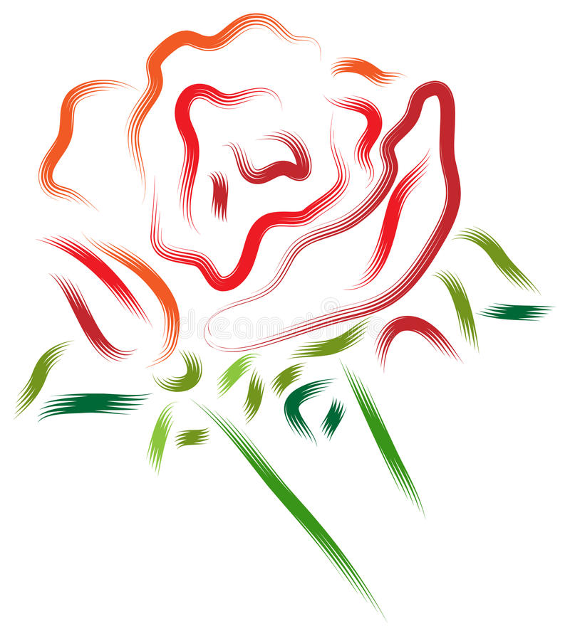 Rose and bud vector illustration