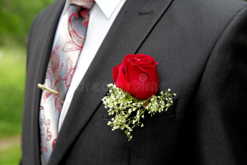 Rose in a buttonhole of the groom. Close up royalty free stock photography