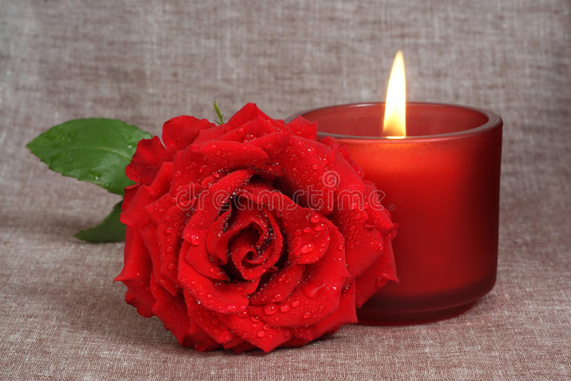 Download Rose and candle stock photo. Image of anniversary, leaf - 10564306