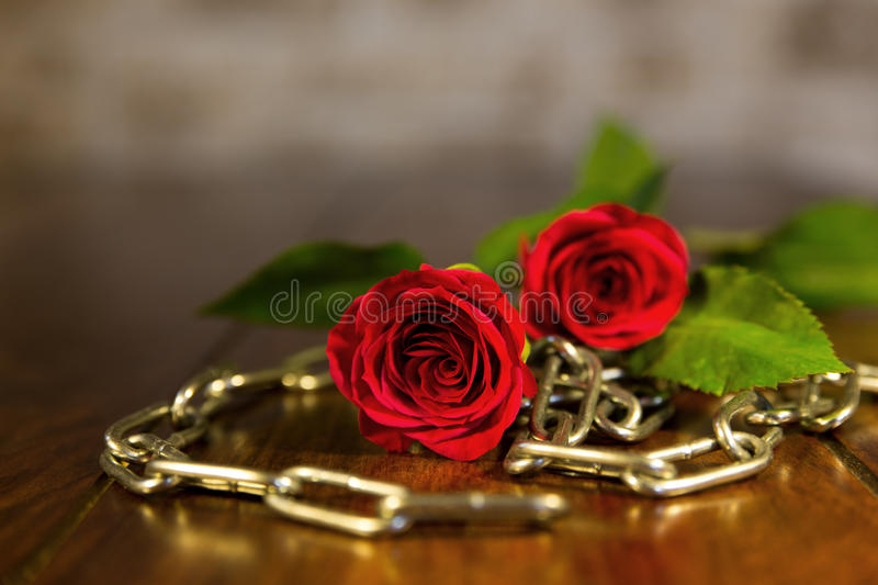 Rose and chains background stock photo