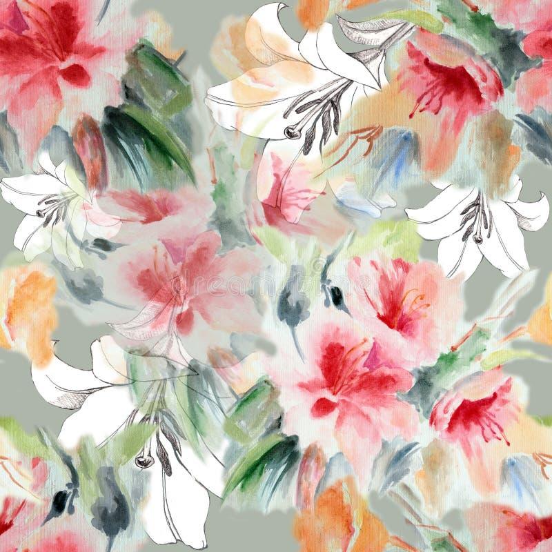 Rose Chinese, gráfico do lírio floresce a aquarela, teste padrão sem emenda ilustração stock