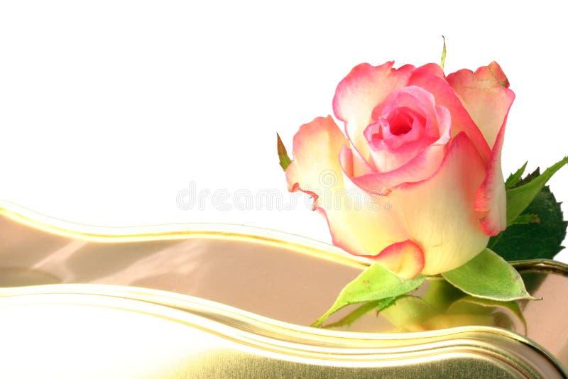 Rose and chocolates