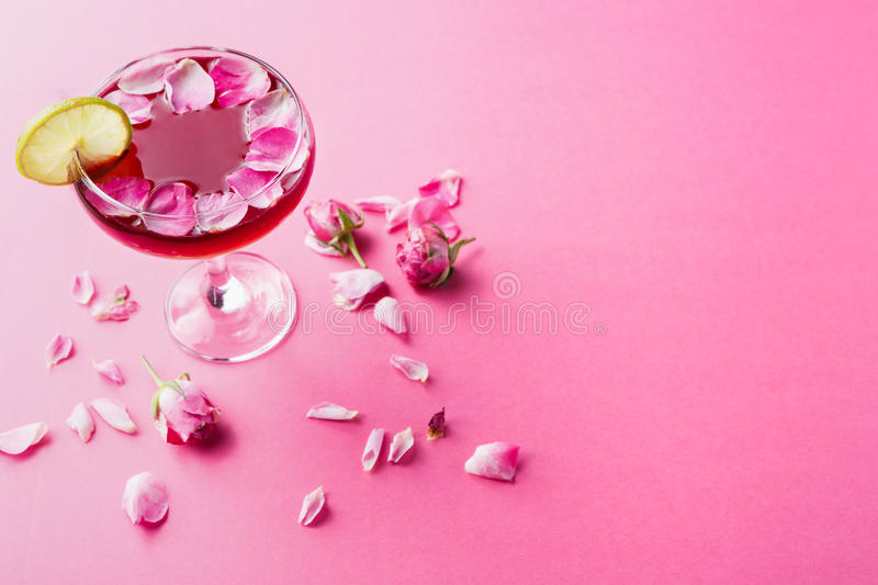 Rose cocktail in champagne glass on pink background royalty free stock image