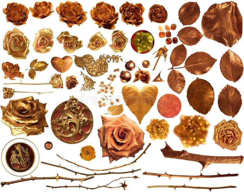 Rose Collection dorata immagine stock libera da diritti