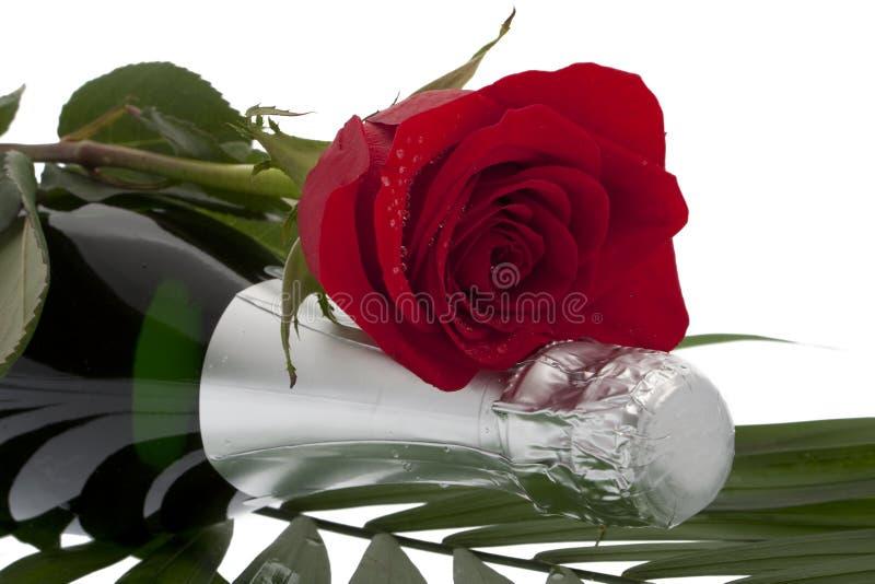 Rose con la bottiglia del champagne fotografia stock libera da diritti
